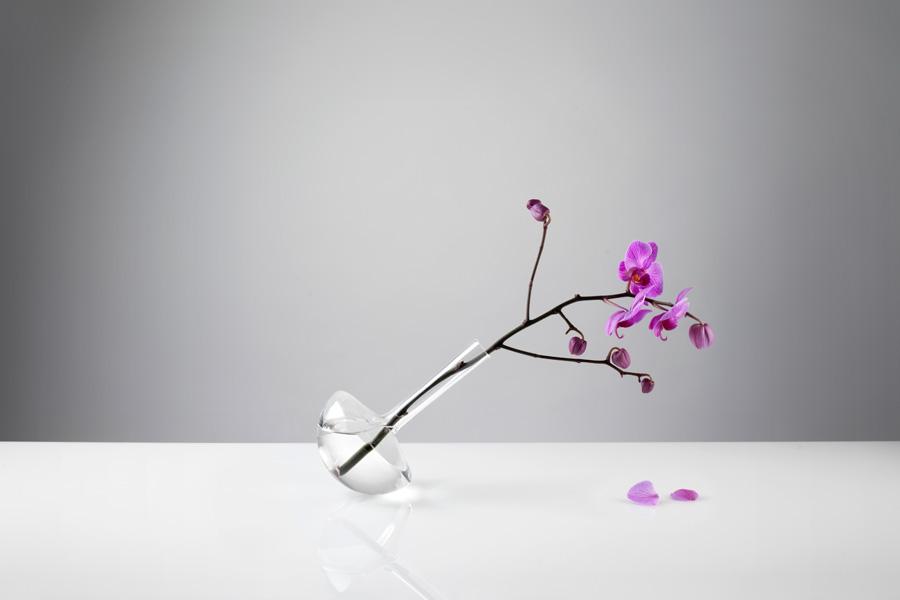 Gauge-vases-wilted