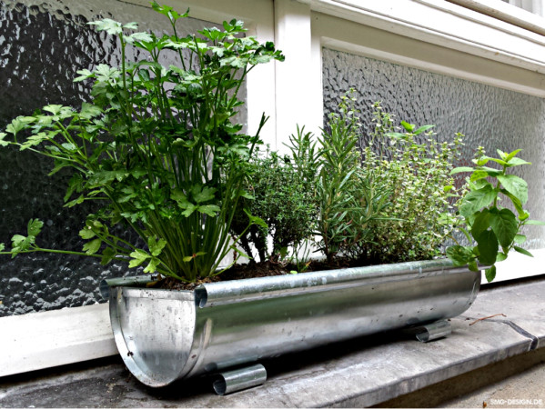 Dachrinnenvorgarten – rain pipe front garden
