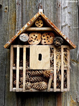 Insektenhotel – insect hotel